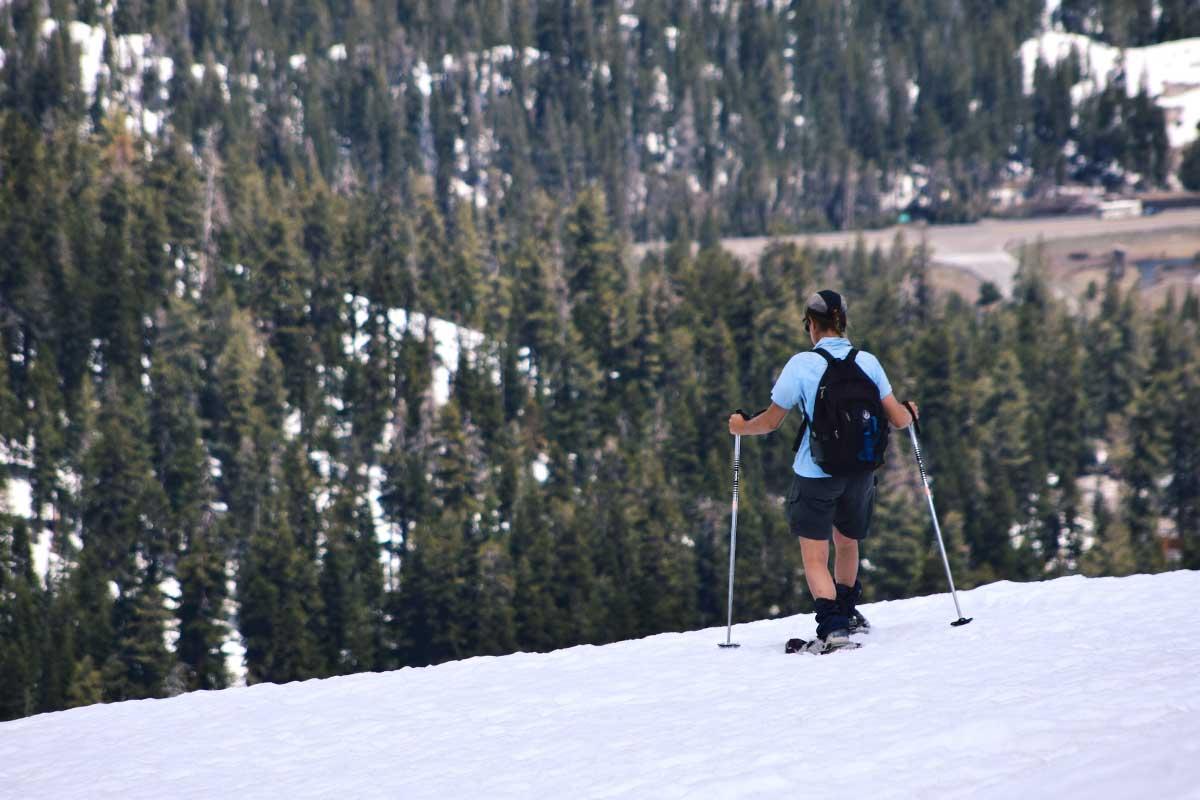 Snowshoeing near Carson Pass