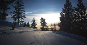 Cross-country ski tracks at sunrise